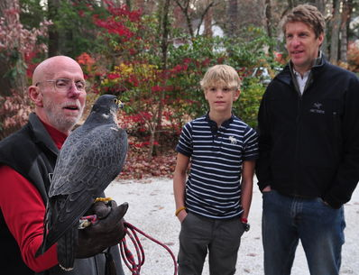 Steve Longenecker showing Sage, the Peregrine Falcon, to Matt and Ellison Smith at the Asheville Movies on 11-13-11
