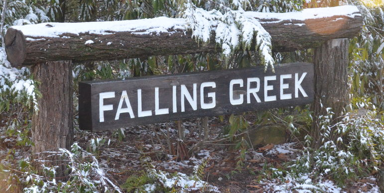 Light Snow Fall At Falling Creek Camp