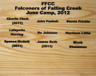 Falconer's of Falling Creek Camp June 2012