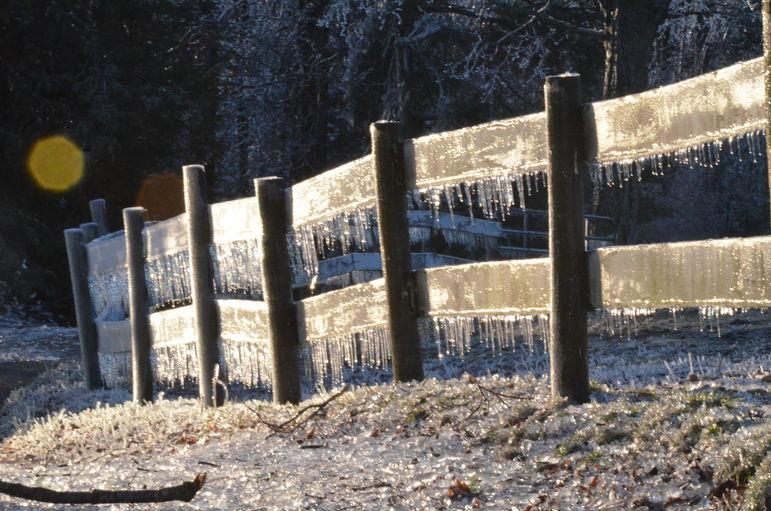 Tuxedo Park Fence