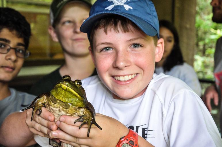 Falling Creek Bullfrog