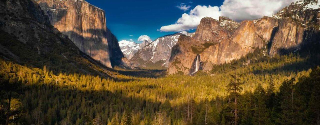 Magnificence-yosemite-national-park