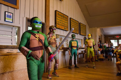 falling creek ninja turtles